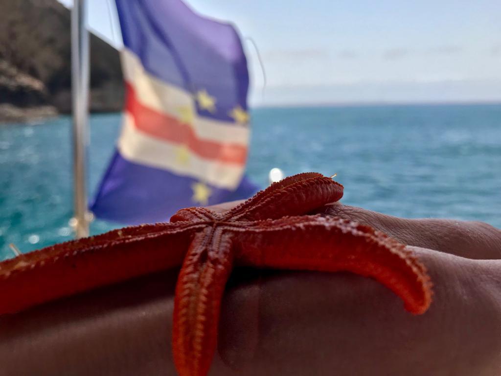 Cape Verde (2).JPG