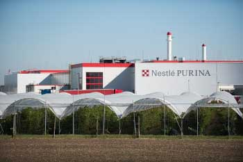 Nestlé Purina (4)