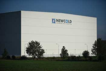 New Cold (2).JPG